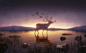 Picture the sky, water, mountains, nature, deer, Hummingbird, fanetti, 3D graphics, by IkyuValiantValentine