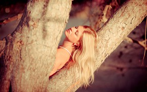 Picture girl, tree, mood, hair