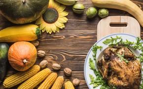 Picture greens, table, sunflower, chicken, corn, pumpkin, nuts