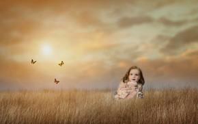 Picture field, the sky, butterfly, mood, meadow, girl