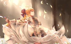 Picture anime, warrior, manga, bishojo, Fate, japonese, Type Moon