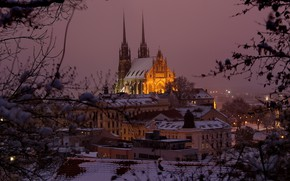Picture winter, snow, trees, night, branches, lights, home, roof, Czech Republic, lights, temple, Palace, Brno