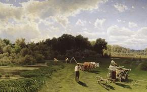 Picture landscape, oil, picture, canvas, Hay, Nikolai Sergeyev