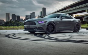 Wallpaper Ford, Road, Niche, Mustang, Wheels