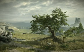 Picture tree, rocks, view, Shadow of the Colossus, In the shadow of the colossus, panormama