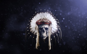 Picture skull, feathers, Indian