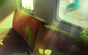 Picture moss, plants, bus, abandoned
