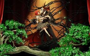 Wallpaper Bride of the sorcerer, Mahou Tsukai no Yome, spikes, two