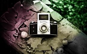 Picture background, camera, Exakta