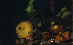 Wallpaper tree, oil, picture, The Martinus Nellius, Still life with Pears with Medlars and a Glass