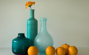Picture bottle, still life, apelsiny