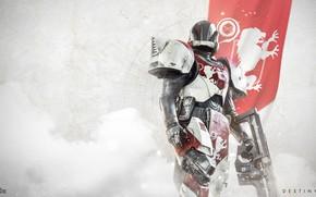 Picture gun, game, armor, weapon, lion, flag, Destiny, Titan, Destiny 2
