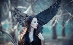 Picture angel, brunette, forrest, black wings