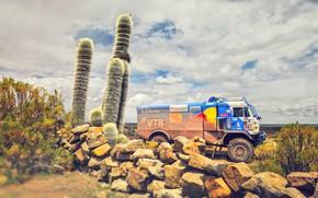 Picture Nature, Sport, Speed, Truck, Race, Master, Beauty, Russia, Beast, Kamaz, Rally, Dakar, Dakar, Rally, KAMAZ, …