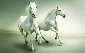 Picture ultapanorama, pastel colors, white horses