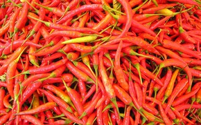 Picture hot, food, pepper, vegetable, chili pepper