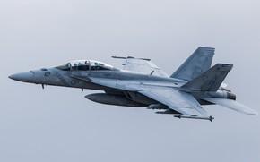 Wallpaper the plane, combat, VFA-102, flies, flight