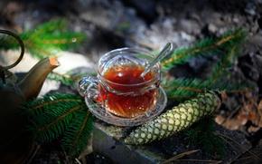 Picture tea, branch, spoon, drink, bumps