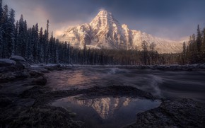 Picture forest, the sky, mountains, nature, reflection