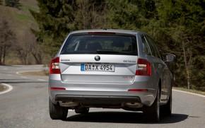 Picture road, asphalt, vegetation, 4x4, Skoda, universal, 2013, feed, Skoda, Octavia Combi, gray-silver