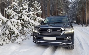 Picture winter, forest, toyota LC 200