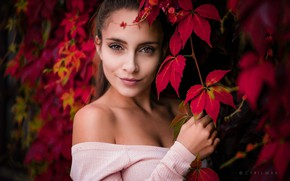 Wallpaper girl, long hair, brown eyes, photo, photographer, autumn, leaves, ponytail, model, lips, face, brunette, portrait, ...