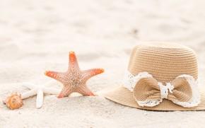 Picture Nature, Beach, Shell, Hat, List, Starfish