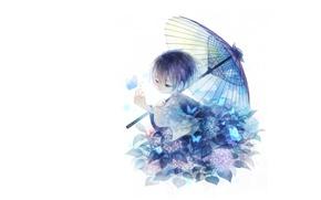 Picture leaves, butterfly, child, umbrella, boy, white background, kimono, Hortensia