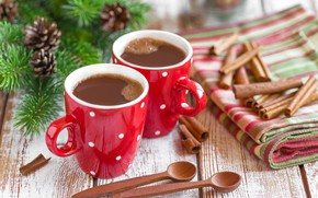 Picture coffee, cinnamon, fir-tree branches