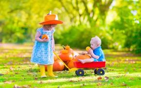 Picture autumn, boy, girl, pumpkin, of priod