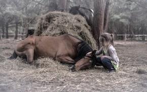 Wallpaper nature, horse, girl