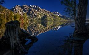 Picture mountains, lake, Jenny, Grand Teton, Grand Teton National Park, Jenny Lake