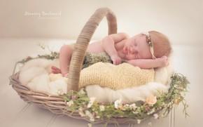 Picture flowers, sleep, sleeping, girl, basket, baby, decor
