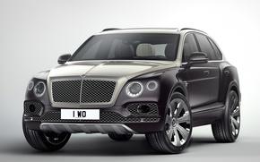 Picture car, Bentley, Bentley Bentayga Mulliner