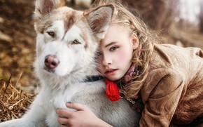 Picture dog, girl, friends, husky