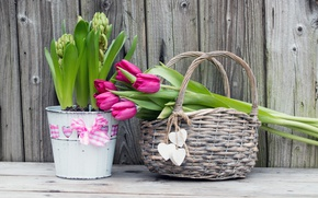 Picture flowers, bouquet, tulips, basket, wood, flowers, romantic, hearts, tulips, spring, purple