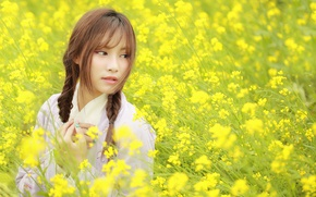 Picture field, summer, face, Asian