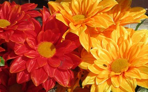 Picture flowers, bright, artificial flowers