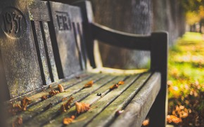 Wallpaper autumn, leaves, bench