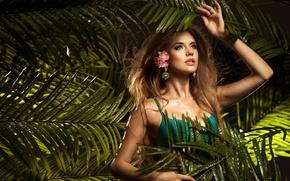 Picture flower, leaves, girl, Palma, brown hair, bra, curls