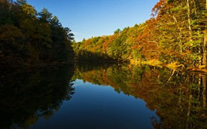 Picture autumn, forest, water, river