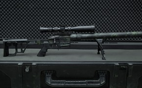 Picture weapons, weapon, custom, sniper rifle, sniper rifle, Lobaev arms, Lobaev arms