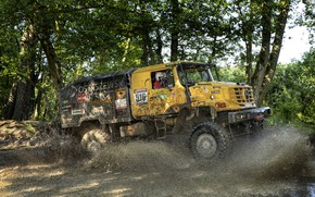Picture forest, water, vegetation, Mercedes-Benz, dirt, truck, the roads, rally, Zetros
