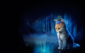 Picture forest, cat, fantasy, fishing, frog, art, children's