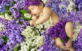 Picture baby, sleeping, lilac