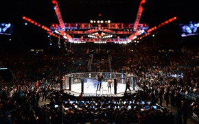 Picture MMA, UFC, Cage