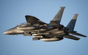 Picture the sky, flies, blue sky, F-15E, combat aircraft