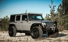 Picture Oscar, with, Wrangler, Jeep, Edition, Mike, Smittybuilt