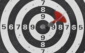 Picture macro, target, dart