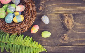 Picture sheet, eggs, Easter, socket, Holiday, fern